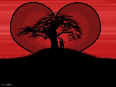 عکس های زیبای عاشقانه Www.Pix98.CoM